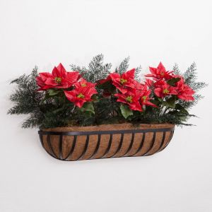 Poinsettia Window Box