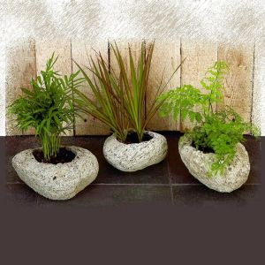 Set Of 3 Small Assorted Volcanic Rock Planters-Range In Size