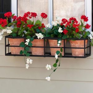 Simple Elegance Window Box Cages - Choose 7 Sizes
