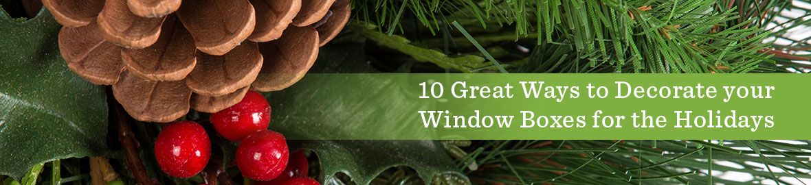 Decorate Your Window Boxes