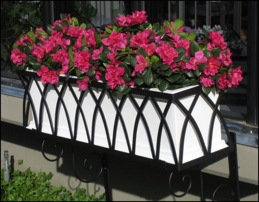 Wrought Iron Cages for Window Boxes