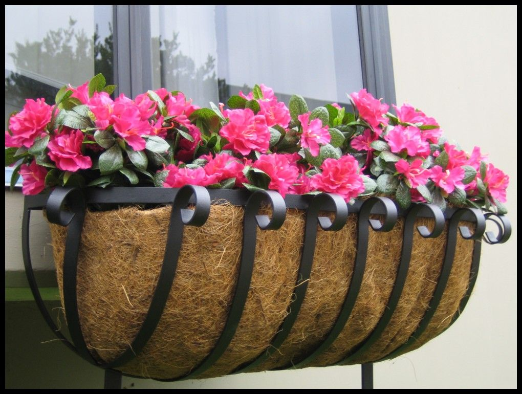 Coir or Moss Lined Window Boxes
